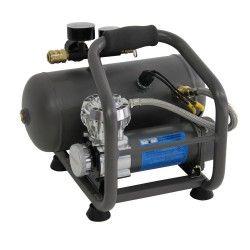 Draagbare Compressor 12V met luchtketel